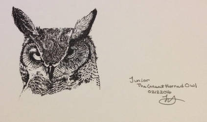 Junior The Great Horned Owl Sketch by psycho23