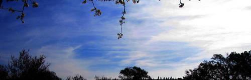 Sky of Blue by Irishlady