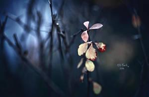 Winter's Tale by ChiFeng-dA