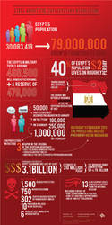2011 Egyptian Revolution by system-s
