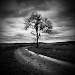 Darkened Days by TaNgeriNegreeN1986