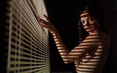 stripes by DenisGoncharov