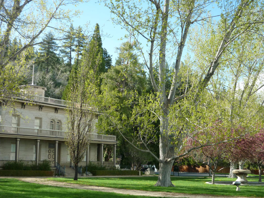 Bower's mansion by Maebry