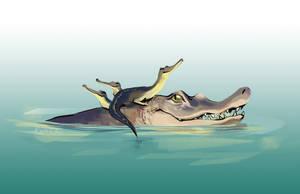 crocs by korkoroshi