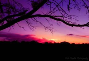 Texas Sunset by Kiwi-chu