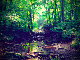 Follow The River by Kiwi-chu