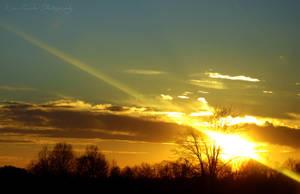 Golden Sunset by Kiwi-chu