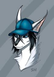 Blue cap by Star-Wolf12