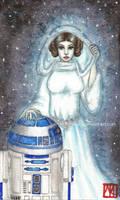 Star Wars: Hope by MannaKana