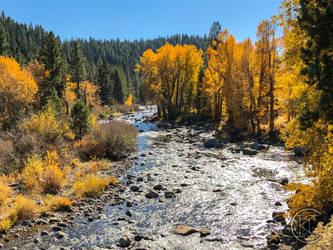 Aspens Creek by Hfar