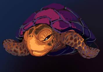 Turtle Sketch by monkeyKnot