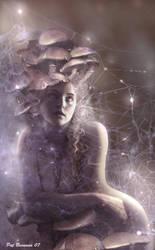 Magic mushrooms by patriciabrennan