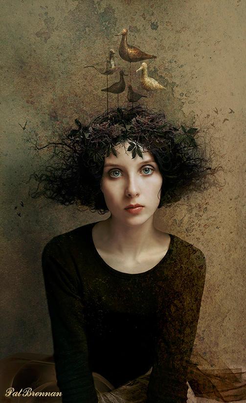Bird dreaming by patriciabrennan