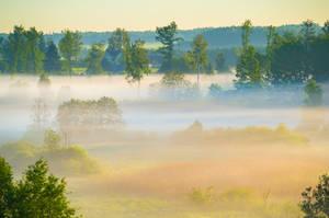 Colorful Fog by sulevlange