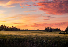 Calm Evening Breeze by sulevlange