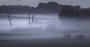 Foggy night by sulevlange