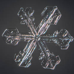Snowflake #2 January 05, 2019 by sulevlange