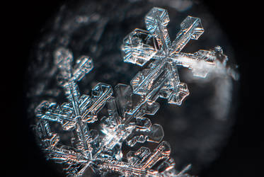 Snowflake #4 January 05, 2019 by sulevlange