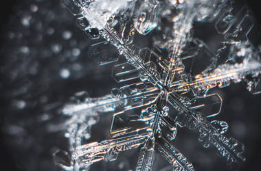 Snowflake #5 January 05, 2019 by sulevlange