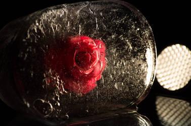 Ice Rose, #2, November 01, 2018 by sulevlange