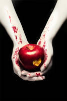 Twilight Cover V.III by vampynicole