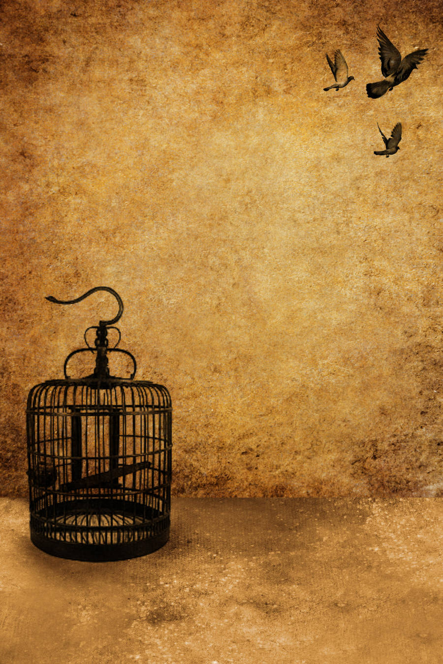 Birdcage Template 6 by sd-stock