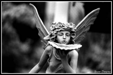 Pixie Fairy Sprite by Sean-Downs