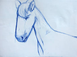 Horse Sketch by GMAC06