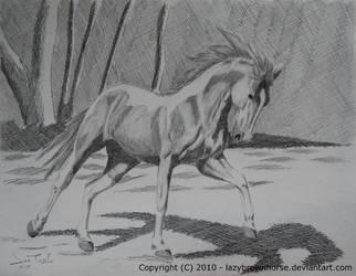 Tobiano Saddlebred by lazybrownhorse