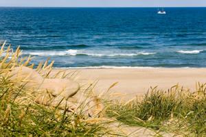Living dunes by MetamorphosisV