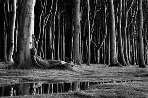 Mystical Forest by MetamorphosisV