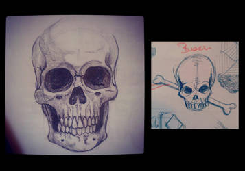 Sketches - skulls by canyuzgec