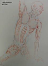 Muscle Study II  01.10 by quar4erlife