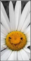 Smile by MasezDromaderi