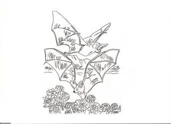 honey bats by countrygirllover