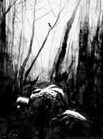 Forest by MackSztaba