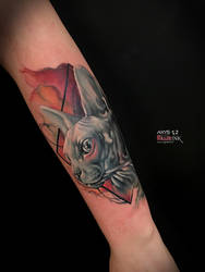 Sphynx watercolor geometric tattoo by nick limpens by nsanenl