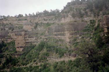 Grand Canyon Greenery by Superly