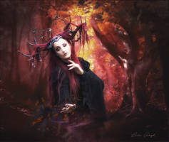 Fantasy by Laura-Graph
