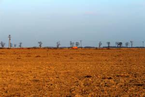 Prairie by Abrimaal