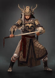 Warrior by SilviuSadoschi