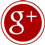 Google+ icon flat round 45px by EXOstock