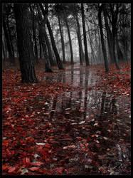 Dark way into the light by Wywiur