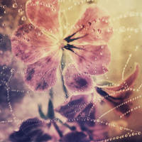 Coalescence by iNeedChemicalX