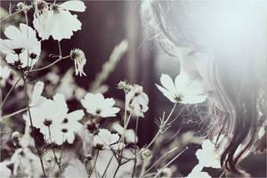 Midsummer Sonata by iNeedChemicalX