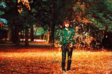 A choir of autumn leaves by iNeedChemicalX