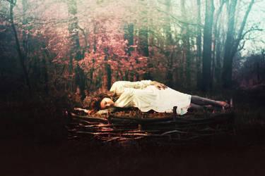 Inside her nest by iNeedChemicalX