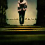Equilibrium by iNeedChemicalX