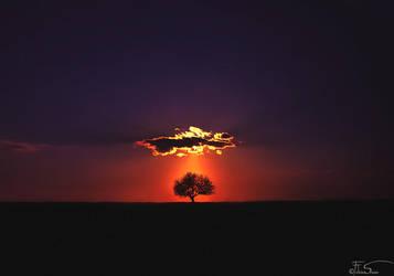 Shine on by iNeedChemicalX