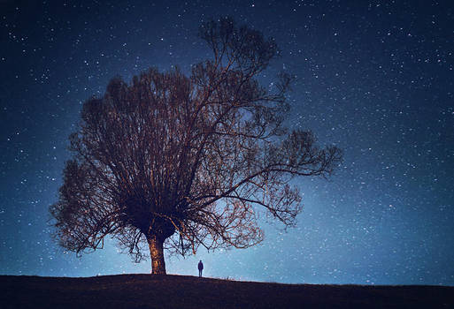 Stargazing by iNeedChemicalX